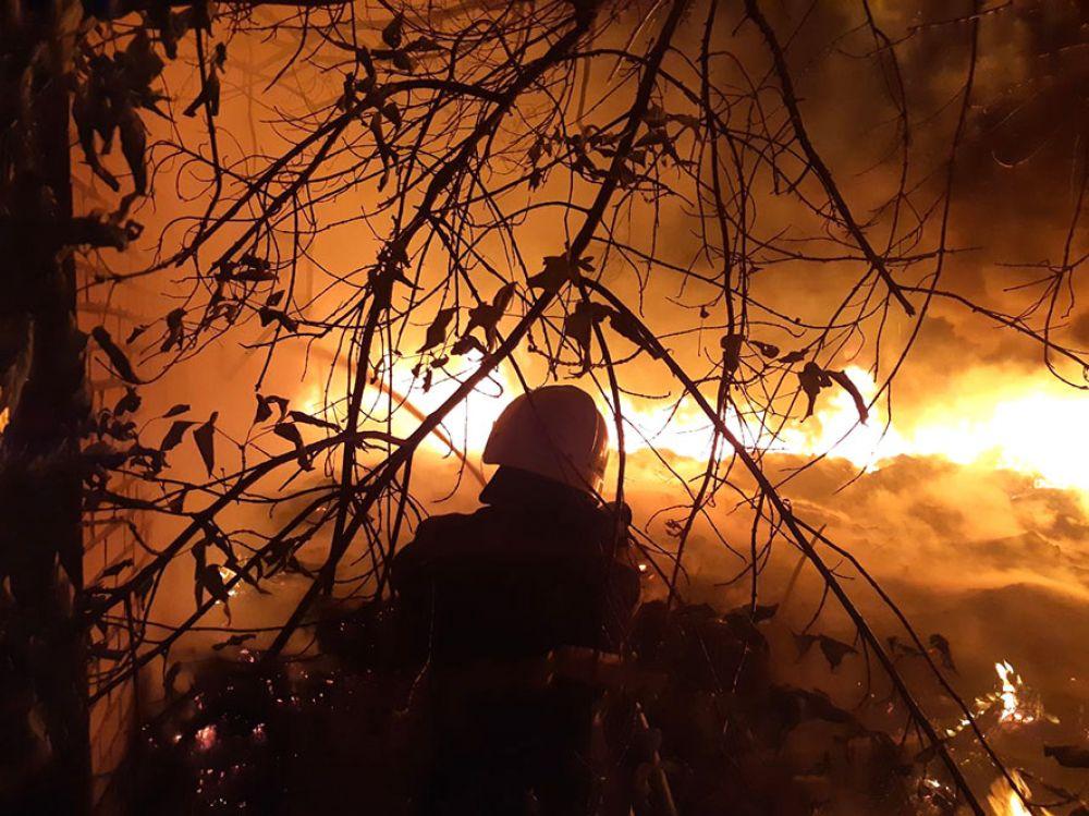 Наслідки масових підпалів (Фото надані пресслужбою Головне управління ДСНС України у Полтавській області)
