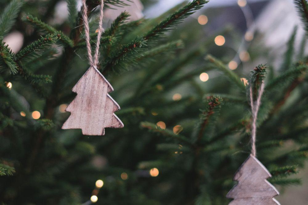 4 міфи про новорічні ялинки (Фото – opinionua.com)
